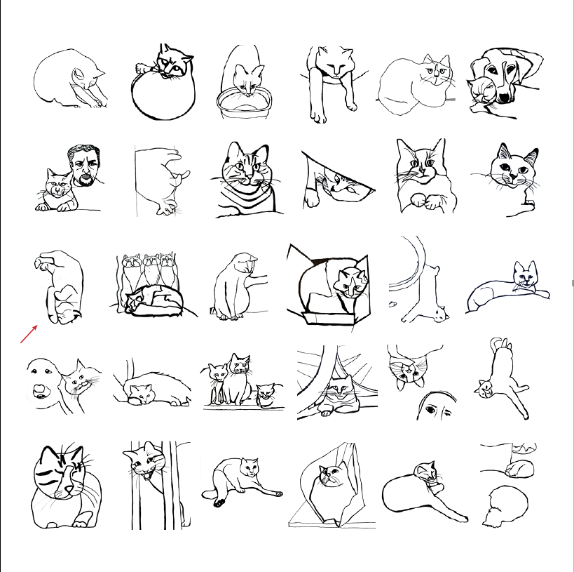 30-day minimalist cat drawing challenge all 30 cats
