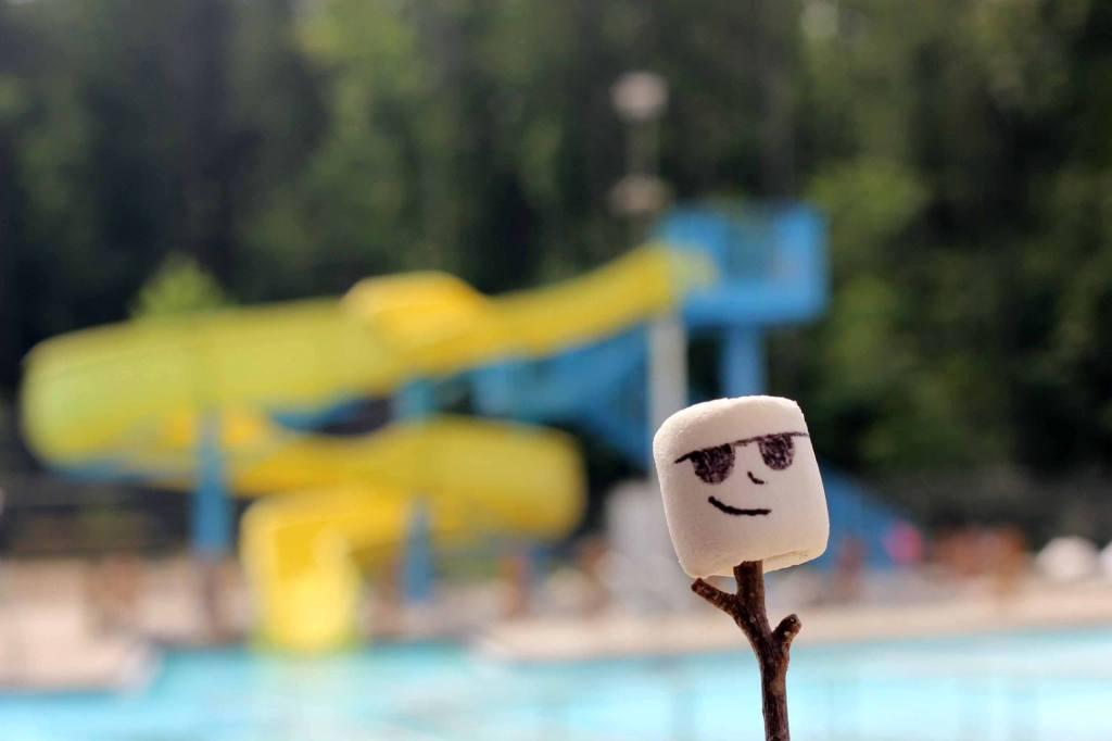 Leiber-pool
