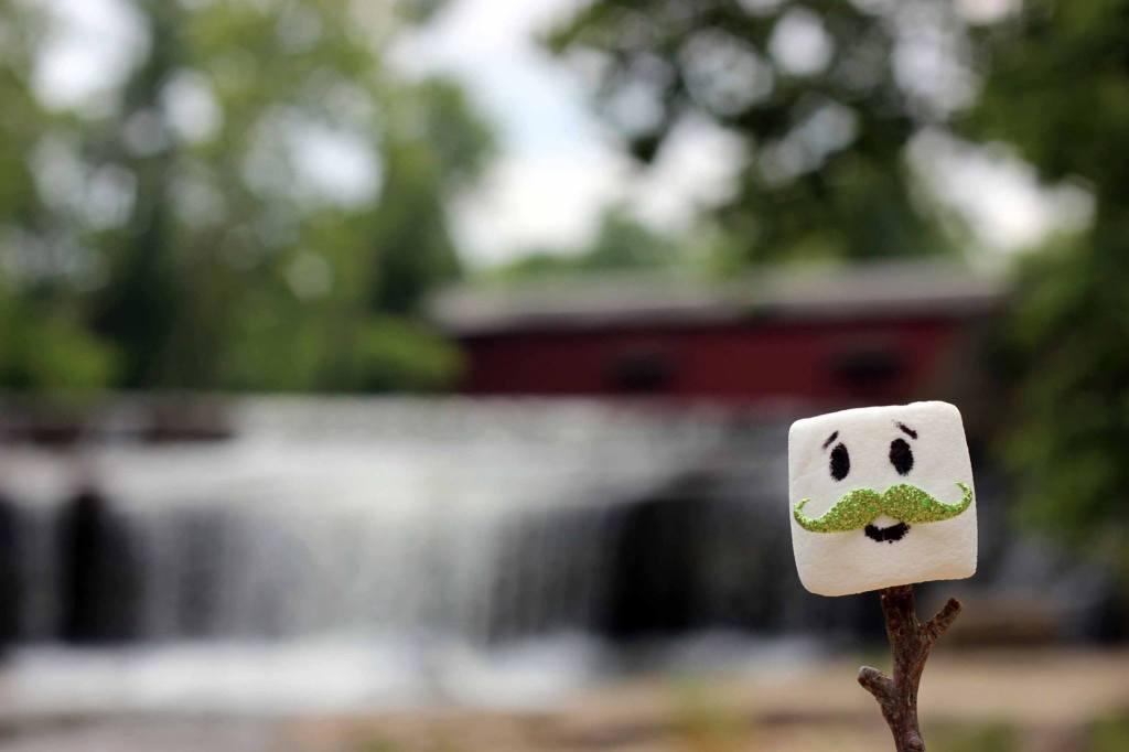 moustache-marshmallow