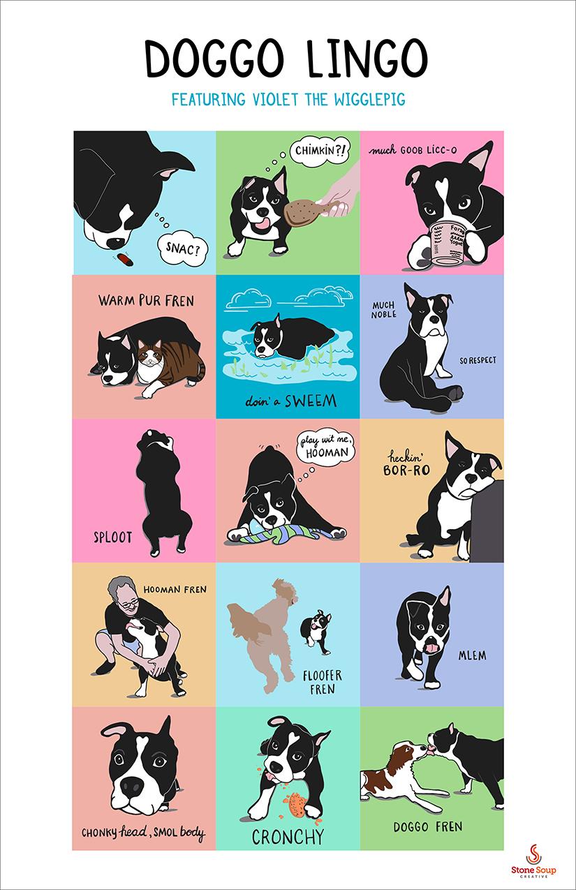 Doggo Lingo infographic